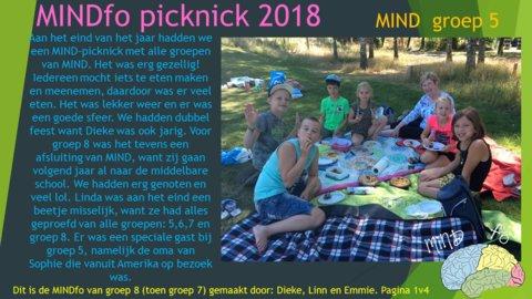 Dia picknick MIND 1